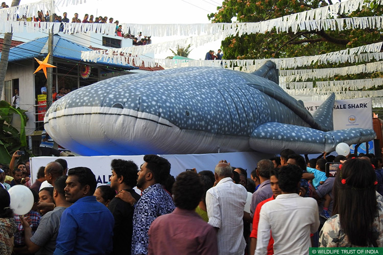 Cochin, Kerala, Awareness, Natural Heritage Campaigns, Marin Conservation, Whale Sharks, Whale Shark Conservation Project