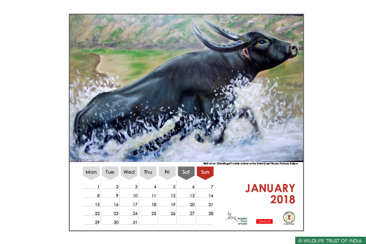 Asiatic Wild Water Buffalo, Central India Wild Buffalo Recovery Project, Chhattisgarh, Udanti Wildlife Sanctuary, Udanti-Sitanadi Tiger Reserve, Wall Painting, Natural Heritage Campaigns, Awareness for Conservation