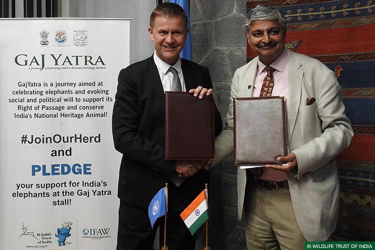 UNEP, UN Environment, Right of Passage, 101 Corridors, Gaj Yatra