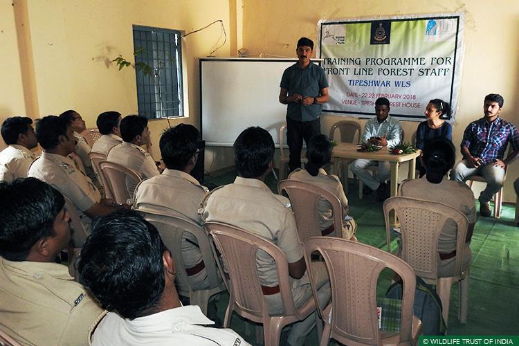 Maharashtra, Tipeshwar Wildlife Sanctuary, Tigers, Human-Carnivore Conflict, Conflict Mitigation
