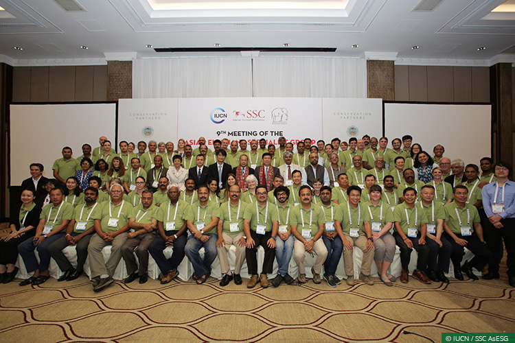 International Conferences, Asian Elephants, Elephant Corridors, Human-Elephant Conflict, Illegal Wildlife Trade, Right of Passage, Asian Elephant Specialist Group